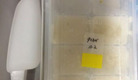 離乳食のフリージングパックはリッチェルがメインになりそう