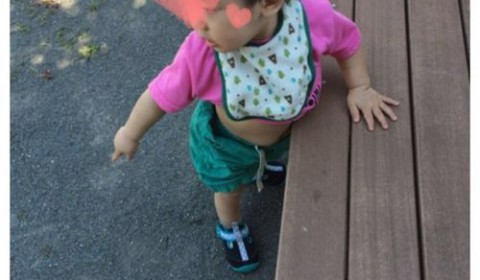 昔、妻とよく訪れた公園に息子くんとお出かけ。蝉が大量発生(〃ノωノ)