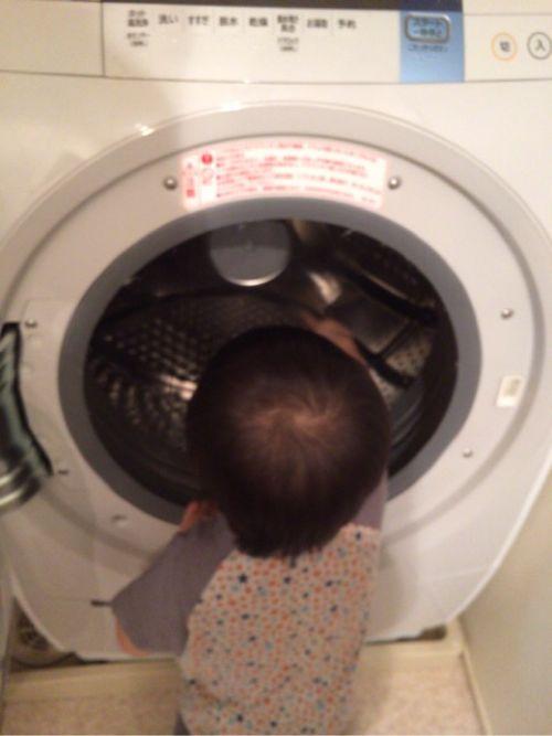 洗濯する息子