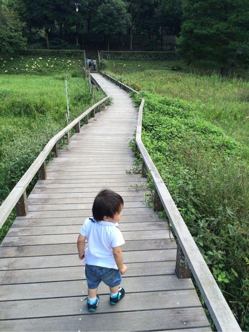 橋を渡る息子