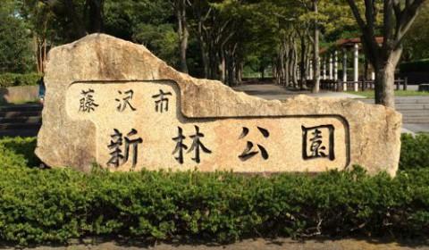 藤沢新林公園にお出かけ。自然と触れ合い&遊具で一歳児でも楽しめた。